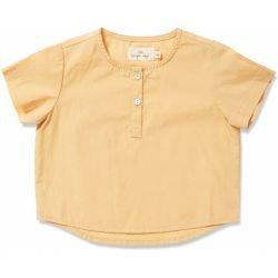 T-shirt   Sorbet
