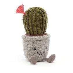 Mini plante | Cactus