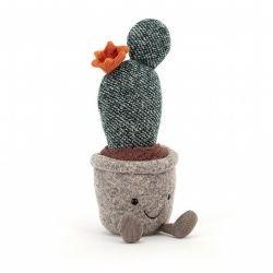 Mini plante | Cactus poire