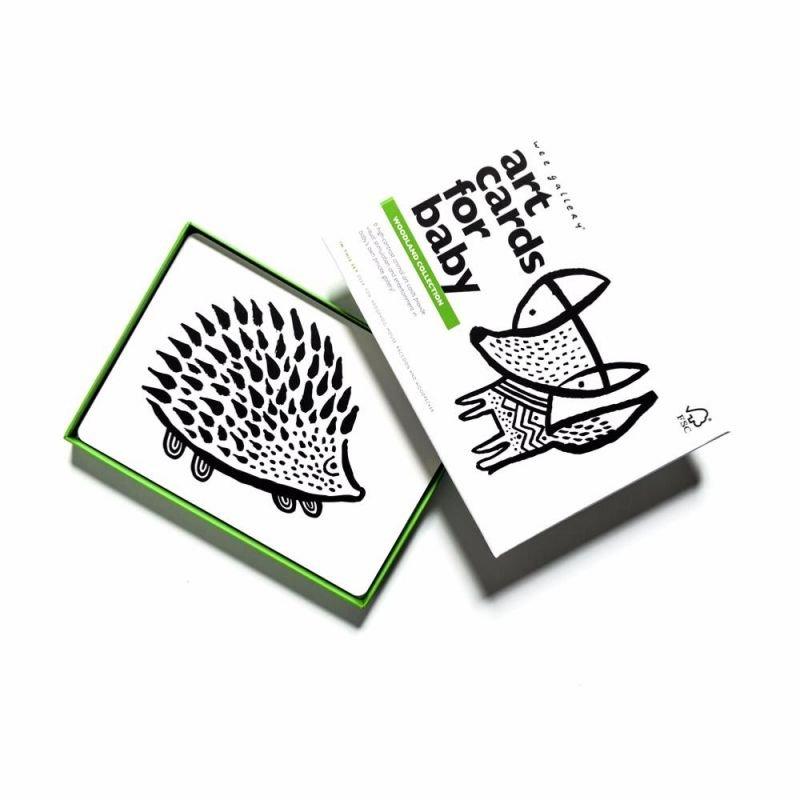 Cartes imagier Animaux des bois