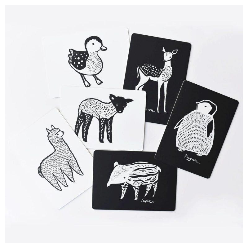 Cartes imagier Bébés animaux
