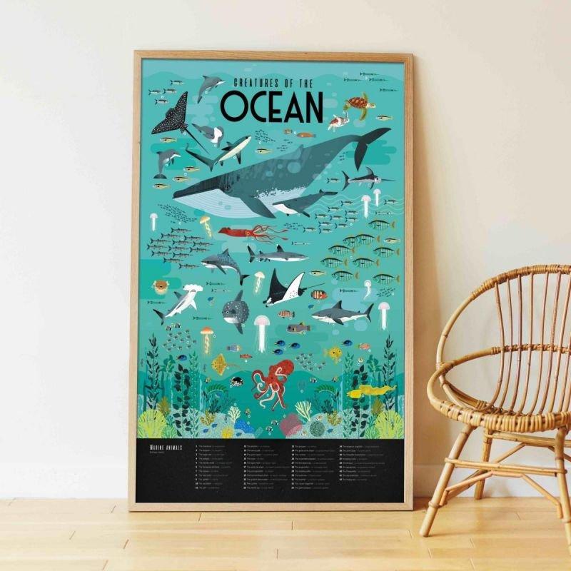 Poster Stickers Animaux des Océans