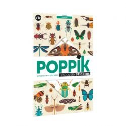 Poster Stickers | Insectes