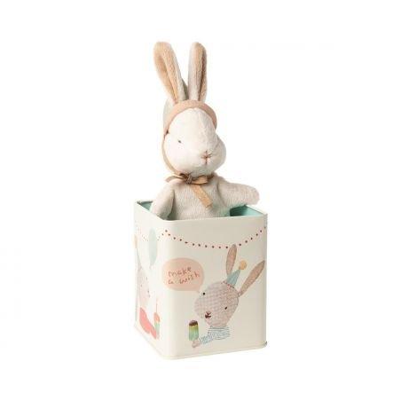 Joyeux lapin dans sa boite