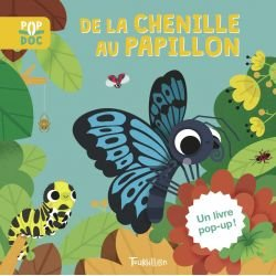 De la chenille au papillon par Tourbillon couverture